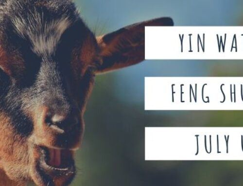 July 2020 Yin Water Goat Feng Shui & BaZi Update