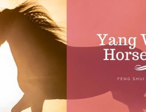 June 2020 Yang Water Horse Feng Shui & BaZi Update