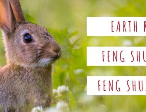March 2020 Yin Earth Rabbit Feng Shui & BaZi Update