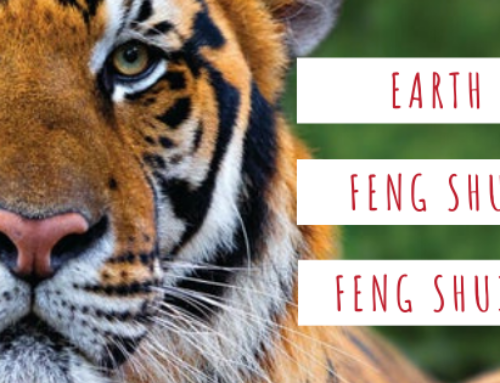 February 2020 Yang Earth Tiger Feng Shui & BaZi Update