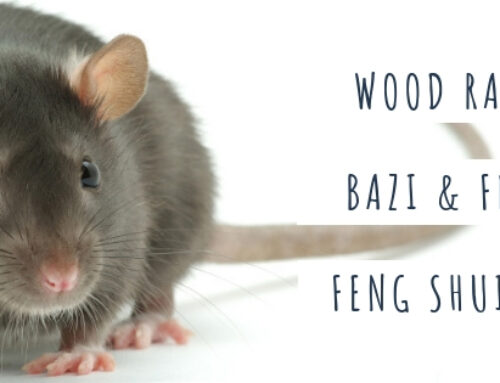 December 2018 Yang Wood Rat: Feng Shui & BaZi Update