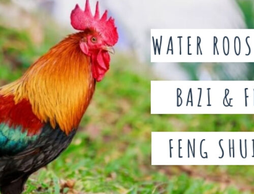 September 2019 Yin Water Rooster Feng Shui & BaZi Update